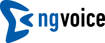 Ng-Voice logo